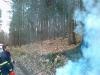 Goreče drevo, 18.03.2011